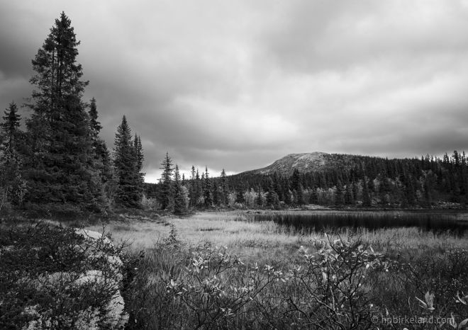 Fjellendin, Valdres, processed in an Ansel Adams style