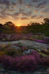 Tanumstrand Sunrise